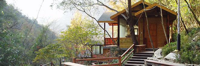 上海周边温泉度假村 上海周边温泉旅游推荐